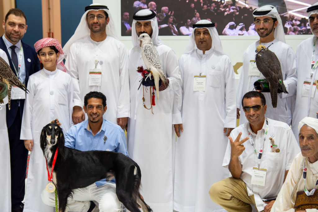 ADIHEX falcon beauty competition gyrfalcon