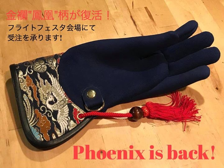 STOOPER Falconry glove